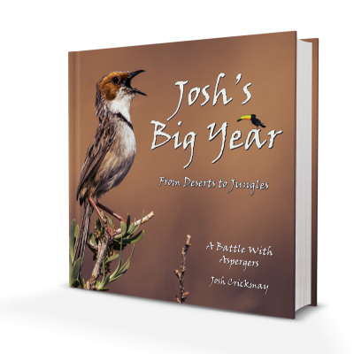 joshs-big-year-cover-2